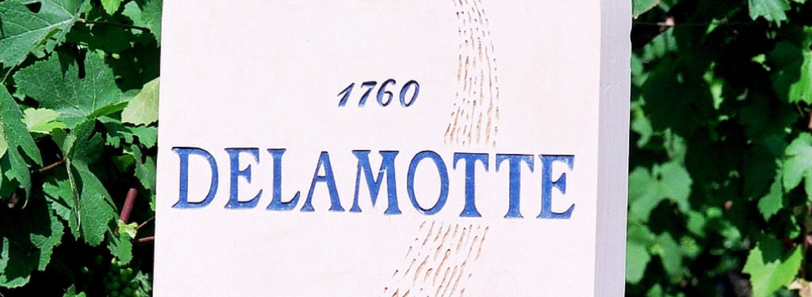 The Tale of Champagne Delamotte