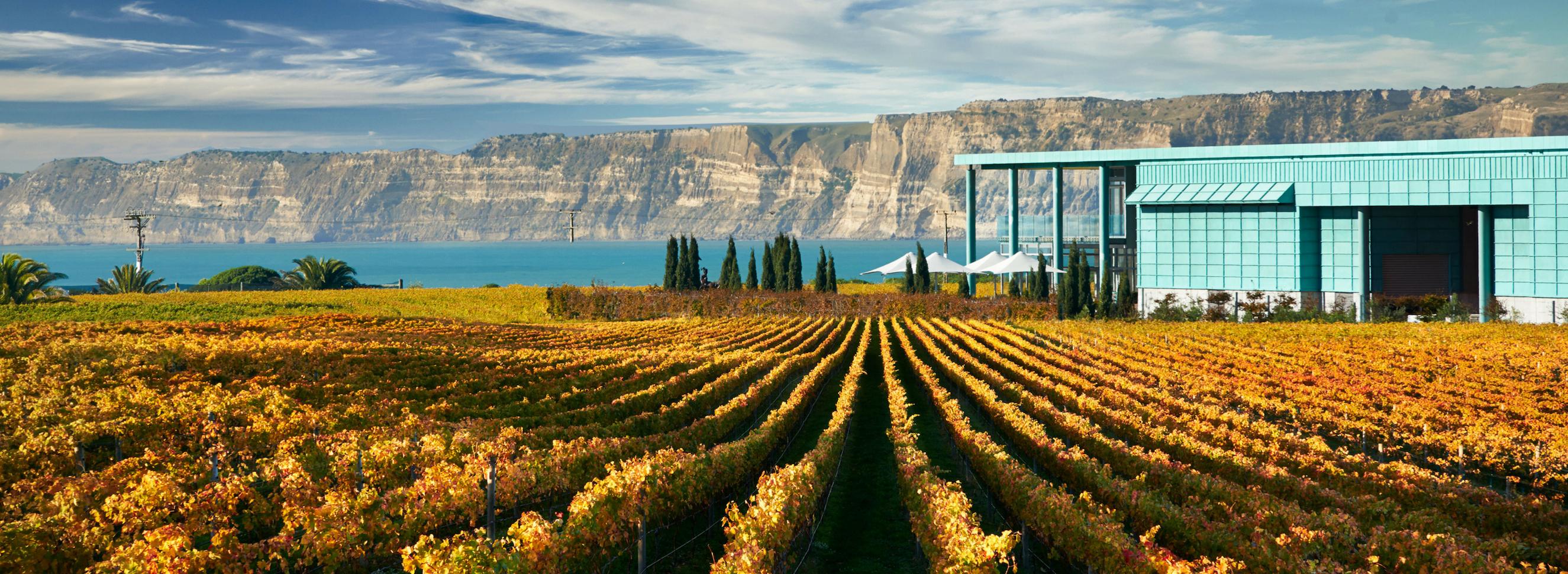 New Zealand: Home to wine and elephants….
