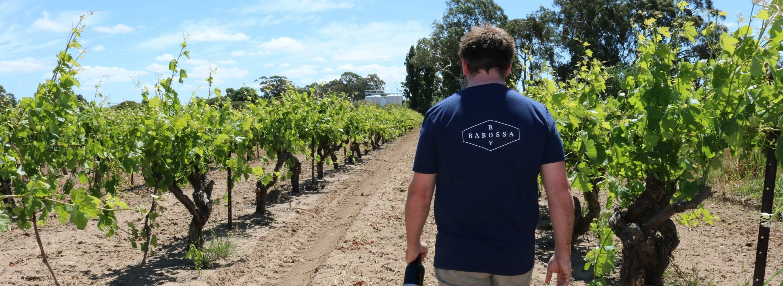 Barossa Boy: Paying Tribute to the Vines and the Generations of Barossa Winemakers