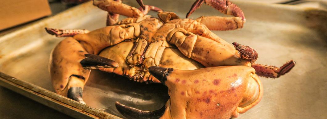 Christmas Food & Wine Pairings: Pazo la Maza Albarino Adegas Galegas 2018 & Crab Salad, Tomatoes & Soft Herbs